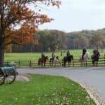 Artillery Ridge Horse Tours